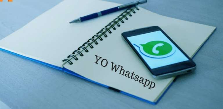 All You Should Know About FM Whatsapp Apk